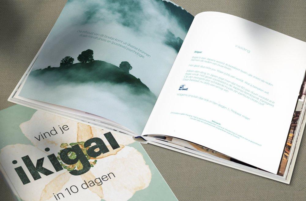 ikigai boekje VGZ door brandXtension